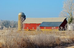 A Well Kept Barn on a Frosty Morn (photomama777) Tags: barn red frost grass building 2018 winter december roof tree sky field silo