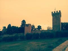 IMG_20190227_000458 (valemsk) Tags: castle watchtower birds sky olive trees cielo uccello stormi riparo rifugio italia porto san giorgio bandiera campi prati torre merli ruderi