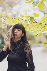 serina Novenber (Koji Fujita) Tags: 20181103世莉菜さん レース 庄内緑地 serina sony α7m3 leaves japan autumninjapan beautyinnature park grean lace translucent