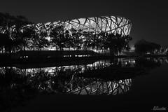 Birds Nest and Reflection Black and White 2008 Olympic Park Beijing China (Barbara Brundage) Tags: birds nest reflection black white 2008 olympic park beijing china
