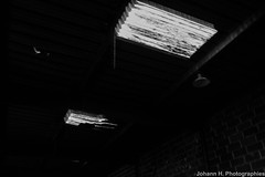 4O8A1558-2 (JHP Photographies) Tags: france aquitaine nouvelleaquitaine dordogne queyssac urbex urbexphotography urbexphotographie usine factory usinedessafectée usinedessafectee industriel industrie industry fricheindustrielle squat tag artsurbains metal beton canon 7dmarkii urbexartist urbexfrance urbexphoto urbexworld exploration curiosité urbexsession streetart abandonedfactory oldfactory lieuinsolite metalicstructure destruction abandonné punk anarchie anarchy toilet toilettes remorque carcasse mobylette inspiration urbexeurope underground rebel explore passéindustriel sacage lugubre nature dark rural rurex lostplaces