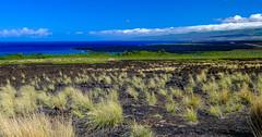Hawai'i (Daren Grilley) Tags: queen kaahumanu highway kekaha kai beach trail hawaii lava ocean island hualālai volcano fuji fujifilm