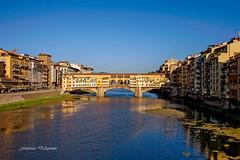 Firenze (Francesca D'Agostino) Tags: città city firenze florence fiumearno riverarno pontevecchio colori colors