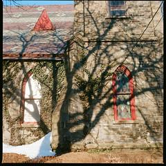 Springtime  Kingston, NY,2019 (mwilli214) Tags: hassblad500cm kodak ektar100 120mm filmphotographic analog grain emulsion beliveinfilm shootitwithfilm
