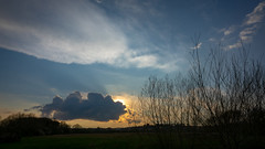 End of the Day (Brian Negus) Tags: branches sky leicestershire watermeadcountrypark sunset tree cloud landscape