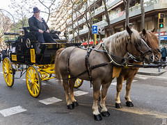 Tres Tombs de Barcelona 2019 (53) (Ismael March) Tags: barcelona trestombs trestombsdebarcelona santantoni sanantón