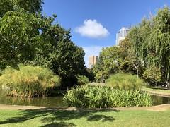 In the park (jglsongs) Tags: melbourne australia park fitzroygardens
