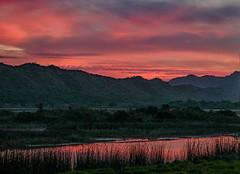 Sunset over the lagoon (Johann (Still Me!)) Tags: sunset sonsondergang lagoon highiso iso6400 johanndejager ef24105mmf4lisiiusm canoneos5dmarkiv simplysuperb greatphotographers