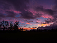 The Sky has gone mad (RS400) Tags: purple sun set after sunset golden hour wow cool amazing travel tree trees southwest uk olympus landscape sky clouds amaazing bristol cold orange