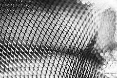 Wherever there is light, one can photograph (Peter Jaspers) Tags: frompeterj© 2019 olympus zuiko omd em10 1240mm28 macro macromondays light hardlight bw bn zwartwit blackwhite sieve lines dof bokeh abstract sunlight
