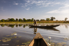 Fisherman (Irene Becker) Tags: africa arewa imagesofnigeria kaduna kadunastate landscape nigeria nigerianimages nigerianphotos northnigeria westafrica lake northernnigeria reflection sunrise