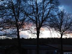 Himmel über Unterbibrach (elisabeth.mcghee) Tags: himmel sky wolken clouds abendrot sunset sonnenuntergang oberpfalz unterbibrach upper palatinate bäume trees wald forest