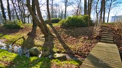 Frühlingsgefühle im Park von Rosengarten (Rüganer Egon) Tags: deu deutschland garz mecklenburgvorpommern rosengarten geotagged 2019 inselrügen frühling park rüganeregon