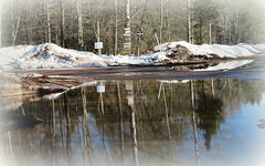 March puddles (yooperann) Tags: snow water reflections camp signs trees blue sky reflected gwinn upper peninsula michigan spring