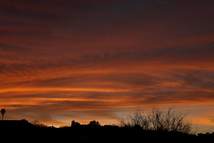 Sunset 3 5 19 #14 (Az Skies Photography) Tags: sun set sunset dusk twilight nightfall sky skyline skyscape rio rico arizona az riorico rioricoaz arizonasky arizonaskyline arizonaskyscape arizonasunset cloud clouds red orange yellow gold golden salmon black march 5 2019 march52019 3519 352019 canon eos 80d canoneos80d eos80d canon80d