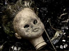 once loved , now disgarded - newark nj (imbrojerry) Tags: doll head abandoned decay lost nikon d750 newark nj creepy strange
