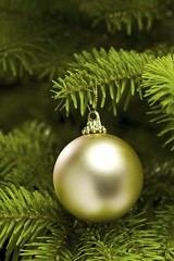 Ball shape Christmas tree decoration (bobmendo) Tags: advent background ball bauble branch bright celebration christmas closeup color decor decorate decoration decorative detail evergreen festive fir glow gold golden green hang holiday horizontal icon isolated merry needle object ornament pine round season seasonal shine simple sparkle sphere tradition tree xmas