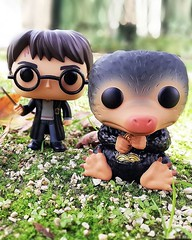 How cute is #niffler? 😍 #funko #harryPotter . . . . #fantasticbeasts  #funkomania (funidelia) Tags: instagram costume deguisement disfraces disfraz deguisements carnaval halloween fato costumi fancydress kostuum kostium