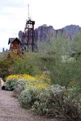 Goldfield54 (ONE/MILLION) Tags: vacation travel tours visit old history mine mining town gold goldfield arizona church railroad cross rust rusty saguaro cactus williestark onemillion horse blue sky outdoors mountains superstition lost dutchman bell flowers cowboys