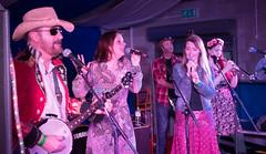 BOARoots-06042 (John French - Happy Snapper) Tags: bradfordonavon rootsfestival bradford avon music centre folk bluegrass blues