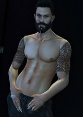 Baltair (Paulus Woller) Tags: catwaheadshaheen endlesspaintattoos man male guy secondlife sl picture photo
