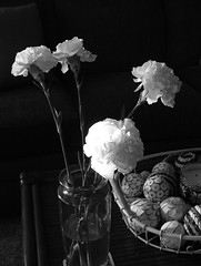 The Roses are gone...... (jHc__johart) Tags: flower carnation bw monochrome roomdecor