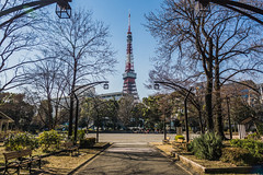Minato, Tokyo, Japan (BirthofSamuel) Tags: tokyo japan minato tokyotower tower tourist red trees bench bluesky green sonyalpha a6000photography sigma16mm14