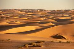 Endless dunes (s_andreja) Tags: mauritania chinguetti sand dune desert