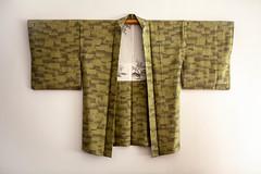 Kimono (patrick Thiaudiere, thanks for + 2 millions views) Tags: vetement clothe clothes kimono veste japon japonais vert green decors toits silk soie madeinjapan flickrfriday