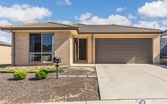 17 Ted Richards Street, Casey ACT