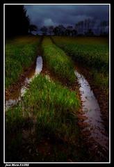 Maussade..... (faurejm29) Tags: faurejm29 canon ciel campagne sigma sky landscape paysage nature