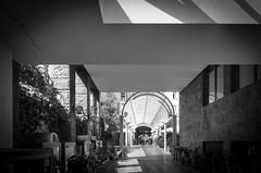 Galleria (o.solemio) Tags: photo n°479 minoosolemio galleria biciclette piante fiori architettura finestre strada lampioni archi fili persone interno monocromo blackwhite leicavlux