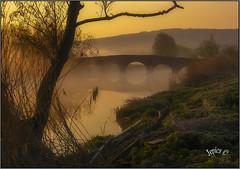 Water Under A Bridge... (Picture post.) Tags: landscape nature green water winter sunrise mist bridge reflections reeds trees paysage arbre eau brume
