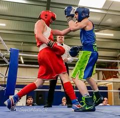 ABA-1921336.jpg (bridgebuilder) Tags: west aba barton boxing club eccles sport north amateur bps sig counties