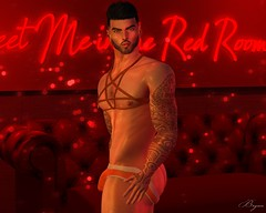 Meet Me In The Red Room (Bryan Trend) Tags: head lelutka guy body belleza jake stealthic hair noche harness underwear briefs signature gianni tmd event fameshed joplino backdrop suicide dollz male men new post gay blog blogger sl second life secondlife