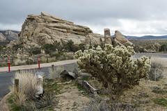 DAK_9274r (crobart) Tags: hidden valley hiking trail joshua tree national park california