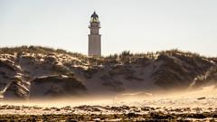 Spain - Cadiz - Barbate - Trafalgar lighthouse (Marcial Bernabeu) Tags: marcial bernabeu bernabéu europe europa south sur spain españa andalusia andalucia andalucía cadiz cádiz barbate trafalgar beach playa sand arena dunas dunes wind viento faro lighthouse