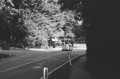 Mount Dandenong Tourist Road (6) (Matthew Paul Argall) Tags: spartus35fmodel400 35mmfilm kentmerepan100 100isofilm blackandwhite blackandwhitefilm road street mountdandenongtouristroad