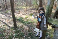 Finding WALL-E. (Ninotpetrificat) Tags: ddh10 doll dd dollfiedream dollfie dollclothes mdd volks hobby handmade eva cute kawaii wald japantoys asiandolls toys
