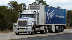 Blue & White (1/3) (Jungle Jack Movements (ferroequinologist)) Tags: steggles chicken mack trident glw freight management perth paul lawton gunning yass new south wales australia valley hume highway sydney transport k200 hp horsepower big rig haul haulage cabover trucker drive carry delivery bulk lorry hgv wagon road nose semi trailer deliver cargo interstate articulated vehicle load freighter ship motor engine power teamster truck tractor prime mover diesel injected driver cab cabin loud rumble beast wheel exhaust double b grunt kenworth