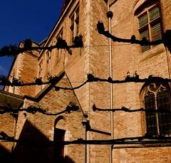 Eglise Church  Bruges  Belgique (buch.daniele) Tags: eglise church danielebuch bruges belgique
