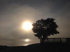 Gimli, Manitoba (CC Benison) Tags: gimli ccbenison beach morning paulisdead paulisdeadanovel crimenovel