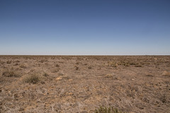 Treeless (David Redfearn) Tags: treeless treelessplain plain hayplain hayplains summer summerafternoon canon6d canoneos6d canonef24105mm arid drought sky outside hotday heatwave