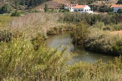 Day 17 to Sagres 5 (granville3) Tags: iberia alentejolitoral iberia2018 portugal odeceixe faro pt