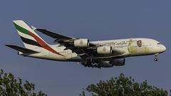 A6-EUA_JFK_Landing_22L_Year_Of_Zayed (MAB757200) Tags: emiratesairlines aircraft airplane airlines airbus airport jetliner jfk kjfk landing runway22l yearofzayed2018
