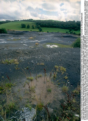 Contaminated Land 2 (hoffman) Tags: contamination countryside field lead poison pollution reclaim reclamation toxic vertical waste 181112patchingsetforimagerights wales uk