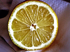 Lemon (Dennisbon) Tags: dennisbon canon eos 7d melbourne australia lemon yellow juice cut sliced sour nopeople