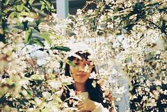 (Hsien hui Tsai) Tags: taiwan yilan nikon nikonem kodak kodakcolorplus flower flowers girl 135mm film filmphotography photography filmphoto hana 2019