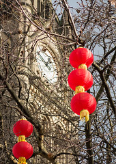 Manchester Chinese lanterns 02 feb 19 (Shaun the grime lover) Tags: manchester clock lantern tower tree winter albert square chinese newyear colour color red