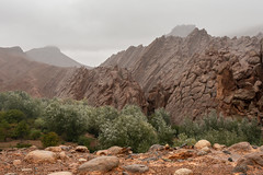Scales (Jethro_aqualung) Tags: nikon d800e 35mm maroc dadès gorges mountain rock jethroaliastullph nature dragonscale mist boumalne mars red